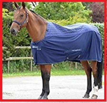 magnetoterapia para caballos beneficios
